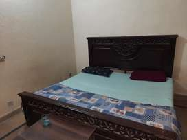 Paradise hostel 2 and 3 persons sharing rooms