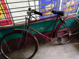 Tata cycle ; pace