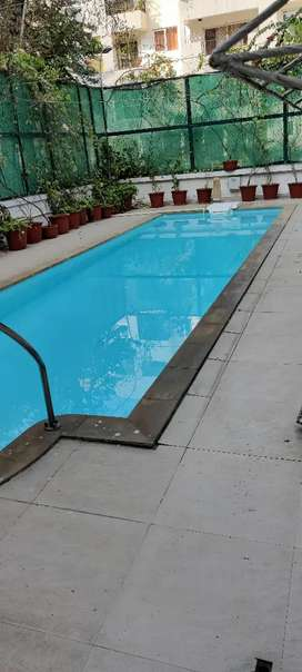 3Bhk luxury flat for sale in Bailey road
