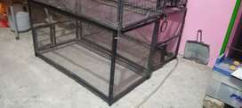 Cage for ringneck