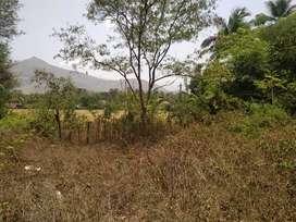 5 cents house plot for sale in Akathethara, Palakkad