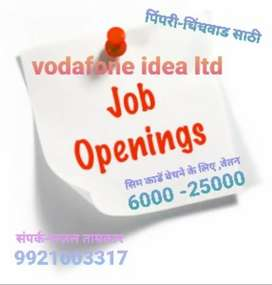 Promoter / Salesman required in Pimri-Chinchwad