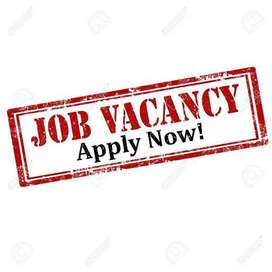 Female Cashier required for departmental store