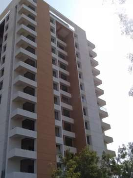 3 BHK Flat Sell - New Building in Pal