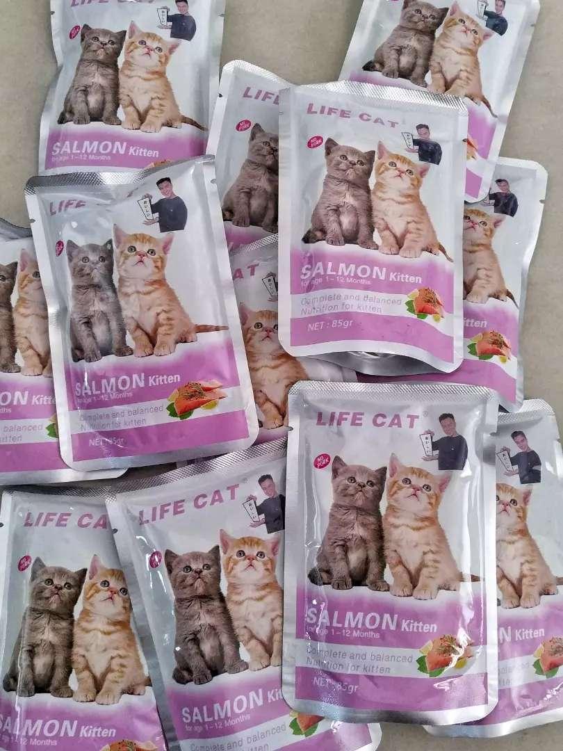 Makanan anak kucing kitten life cat SALMON wet food basah sachet 0
