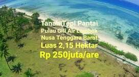 Tanah Pantai Pulau Gili Air Lombok NTB