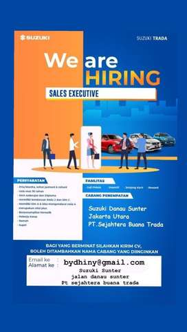 we are hiring for sales exicutive