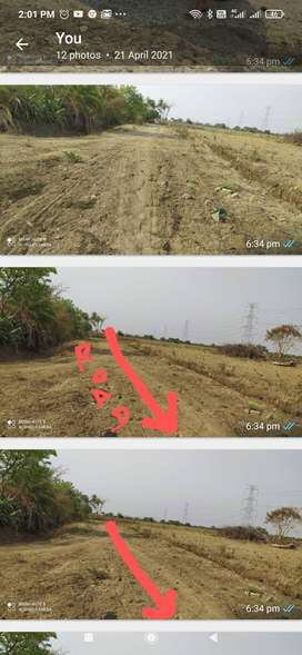 Agriculture land. 5.25Acre. Highly irrigation with well.