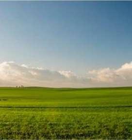 Minimum 5 acres