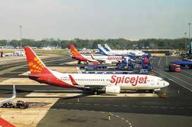 Airline Ticketing Executive