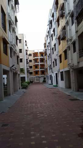 Brand new 3 BHK flat with aquaguard, gyser & lights instld, for rent.