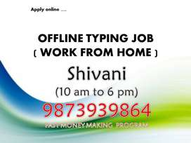 Offline typing job (Work from home)