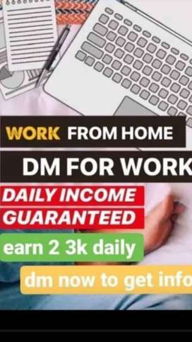 Work From Home (Online Work)