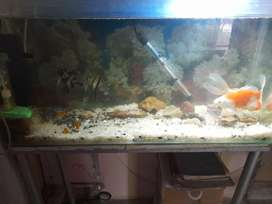 aquarium for sale very nice aquarium family use