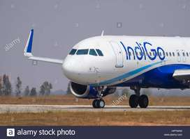new vacancies for ground staff.limited seats. Indigo Airline Urgent hi
