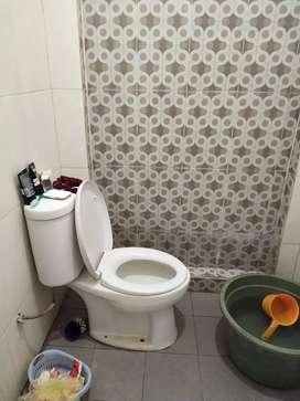 Jasa sedot WC mampet