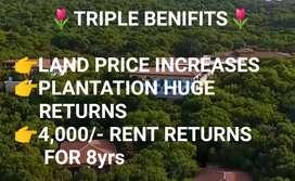 121Sqyds,One Gunta,Farming land for Sale@ Sadasivpet