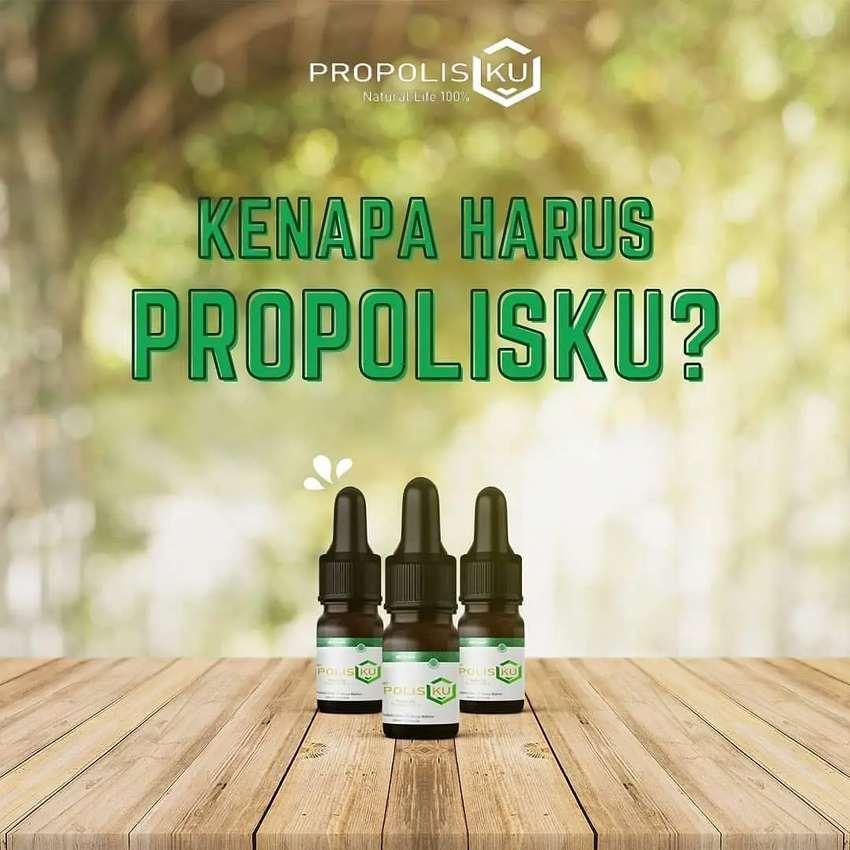 PROPOLIS 100% MURNI PropolisKU