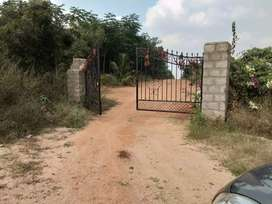 Rs 2700/- sq yd Farm plots near Shadnagar
