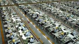 Dibutuhkan 50 Karyawan & Karyawati Di PT. Mutiara Makmur