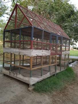 Stylish Cage for bird lovers (5 portions)