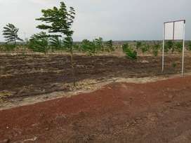 [Immediate Possession] # Narayankhed  * Farm Land for Sale %