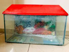 Glass tank with cover