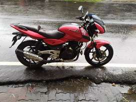Neat and clean pulsar 180