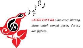 GACOR FAST RX : Suplemen burung kicau tampil gacor, durasi, & fighter