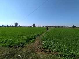 खेत 12000/- प्रति डिस्मिल (पूरी भूमि लेने पर)