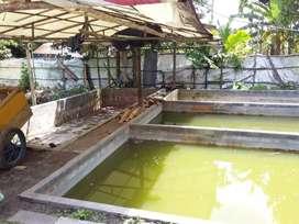 Bedeng tanah serta kolam ikan