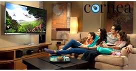 "Cornea brand 43"" frameless full hd LED TV with a warranty of 1 year"
