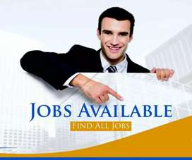 Required Sales Executive