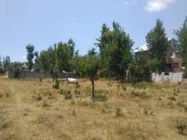 1-2 canals for sale at habak-batpora link road (meerakshah colony)a