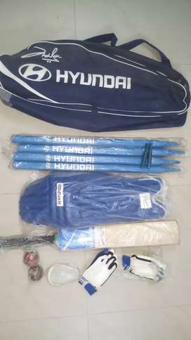 Cricket kit with Bag