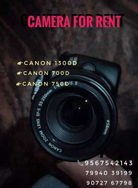 Canon&nikon