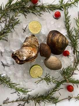 Seafood fresh dan frozen
