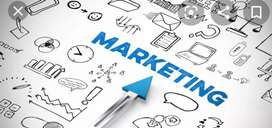 Marketing job vacancies are open in Pvt ltd companies