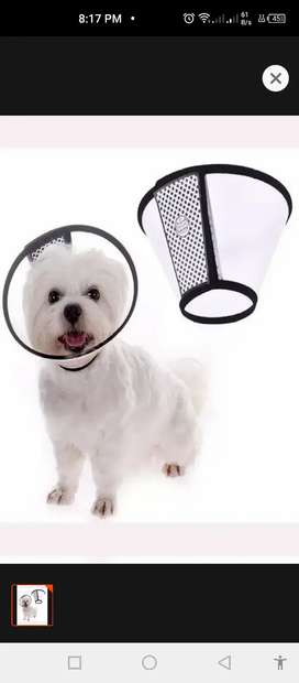 E collar/ medical collar for puppy and small breed- dogs & cats