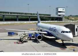 Ground Staff vacancies in Indigo Airlines seats limited