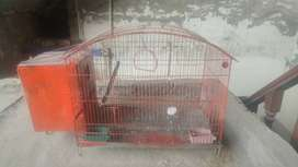Parrots Cage with box attached