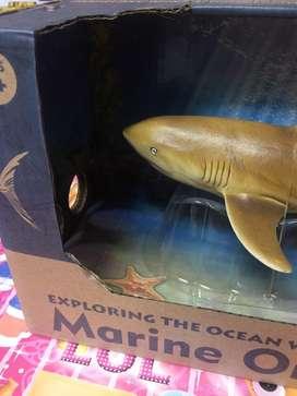 Squisi ikan rubber baru siap kirim bund
