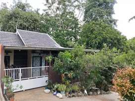 rumah subsidi over kredit daerah gunung Sindur, Serpong,BSD