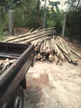 Jual bambu, kaso, triplek dll