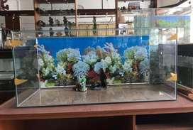 Aquarium di jual 100x45x45 + background