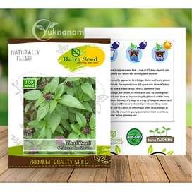 Benih Thai Basil – Haira Seed