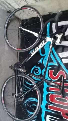 Sepeda balap giant / roadbike