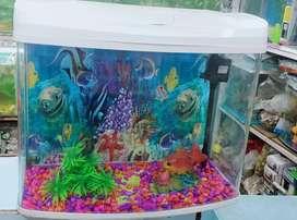 moulded Aquarium