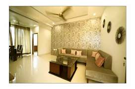 Quality King Near By Fully Furnished Flat