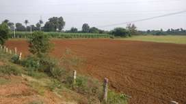 8 Acres Land in Okkur For Sale